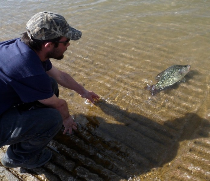 Texas' Lake Texoma Crappie Could Set Multiple Records