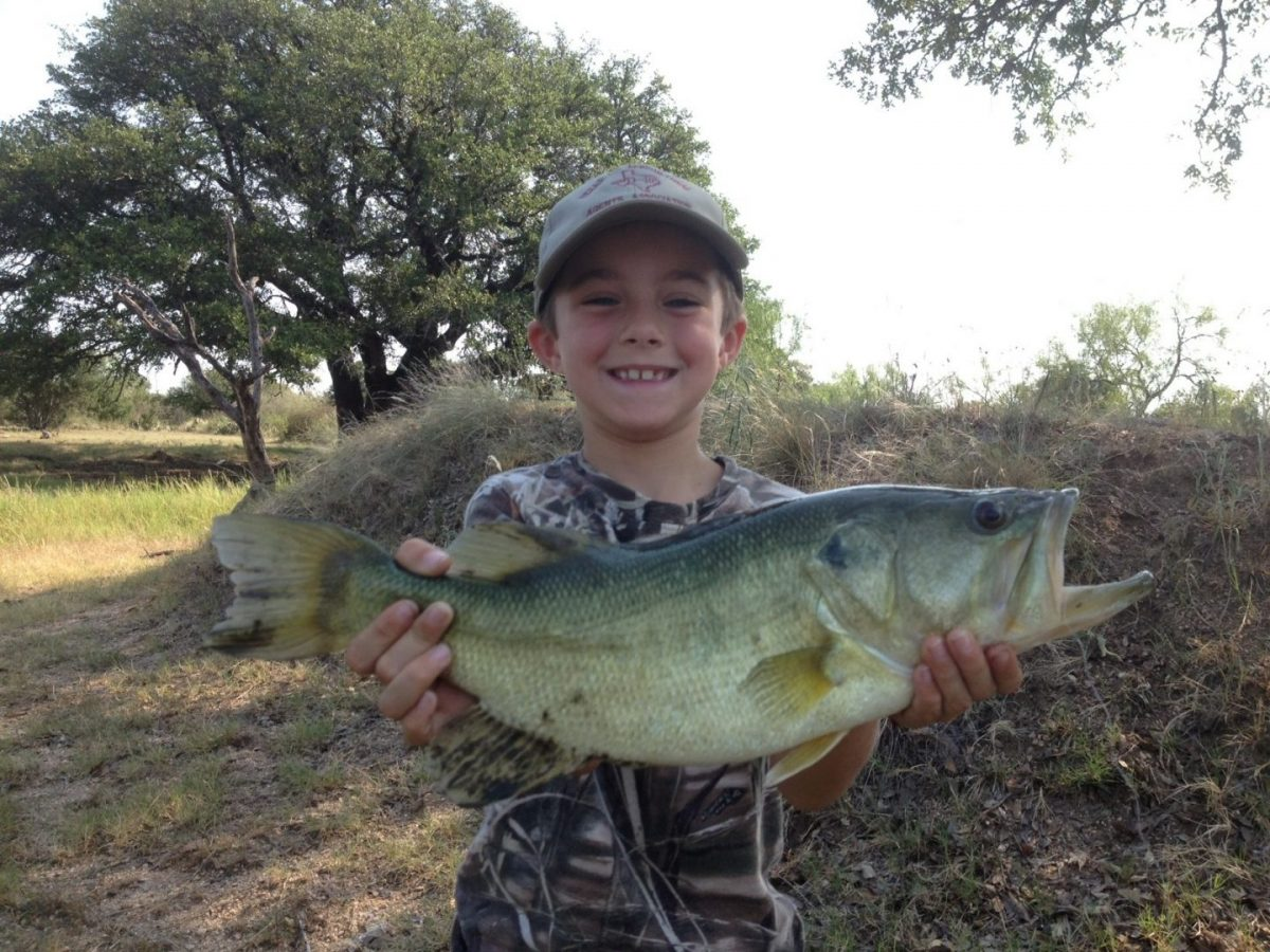 My son's pond bass