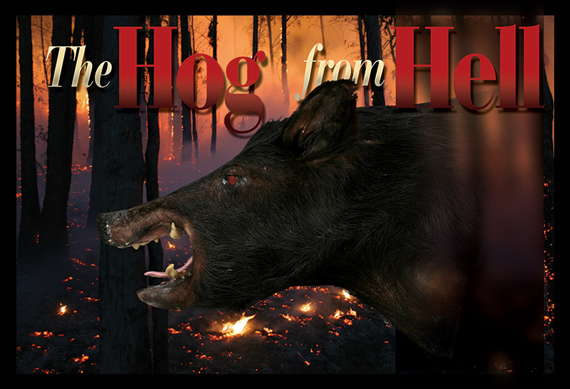 The Hog from Hell