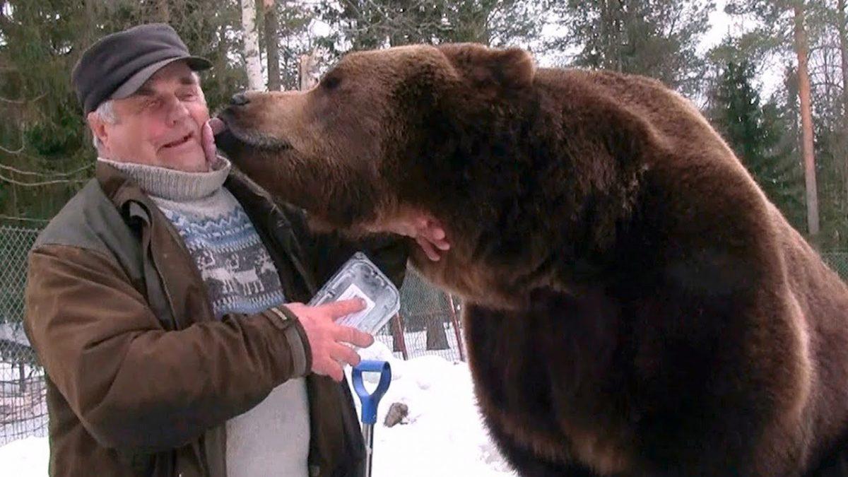 """Meet the """"Bear Man"""" of Finland (Video)"""