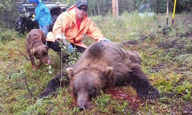 Alaska Man Uses .45 Handgun to Kill 9ft Grizzly Trying to Get Into His House