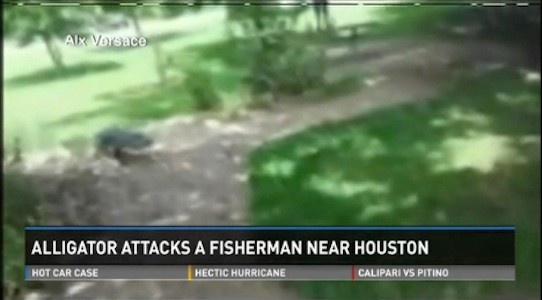Man attacked by gator in Houston lake