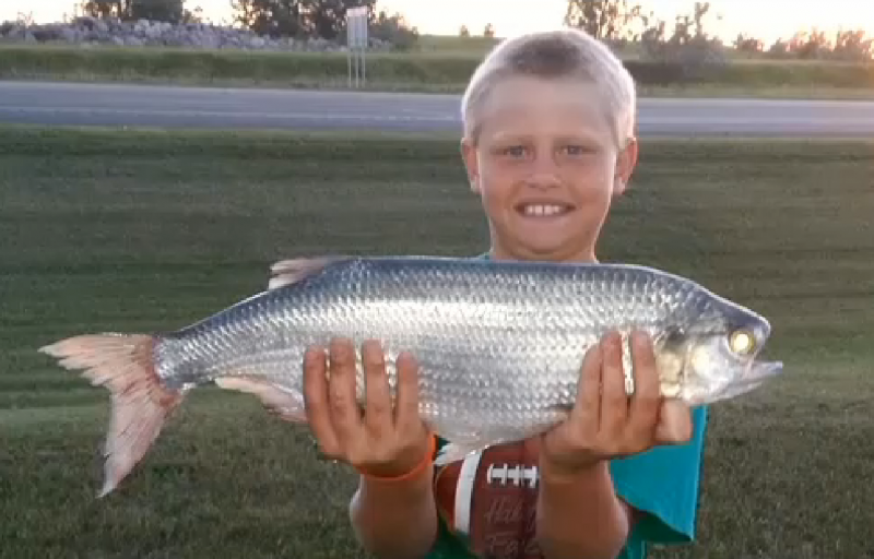 North Dakota Nine-year-old Catches Possible World Record Goldeye