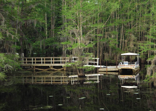 Texas Parks & Wildlife sets public meeting announcing Caddo Lake WMA blind prohibition