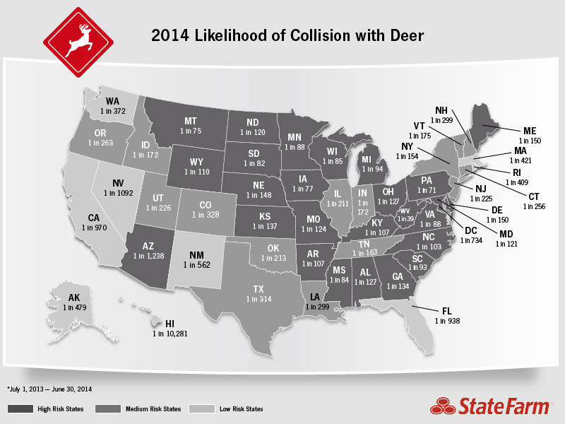 Deer collision accidents nationwide