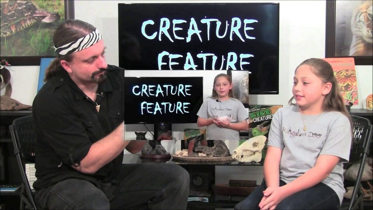 Creature Feature: Tarantula!