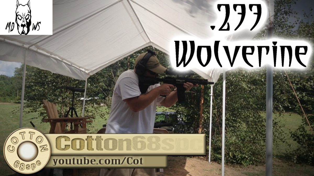 Introducing .277 Wolverine, 5.56 meets 6.8 (VIDEO)