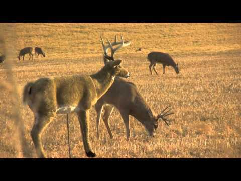 6 of the Greatest Hunting Fails Ever Recorded (VIDEO)