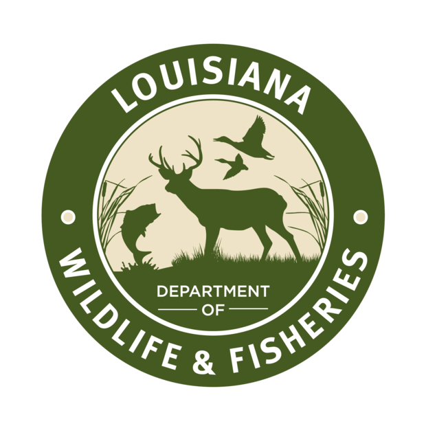 Louisiana man caught with more than 20 black drum over his limit, Wildlife & Fisheries says