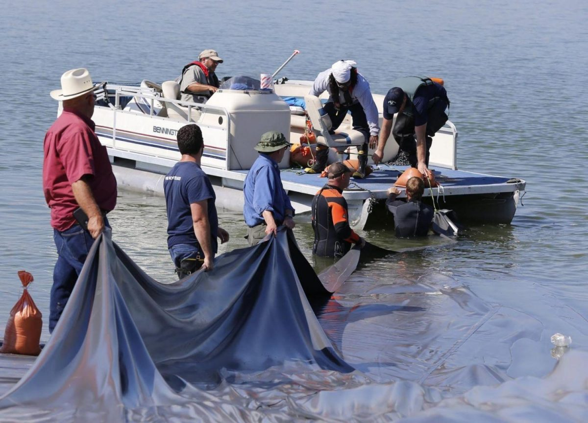 Tarps failed to eradicate zebra mussels in Lake Waco