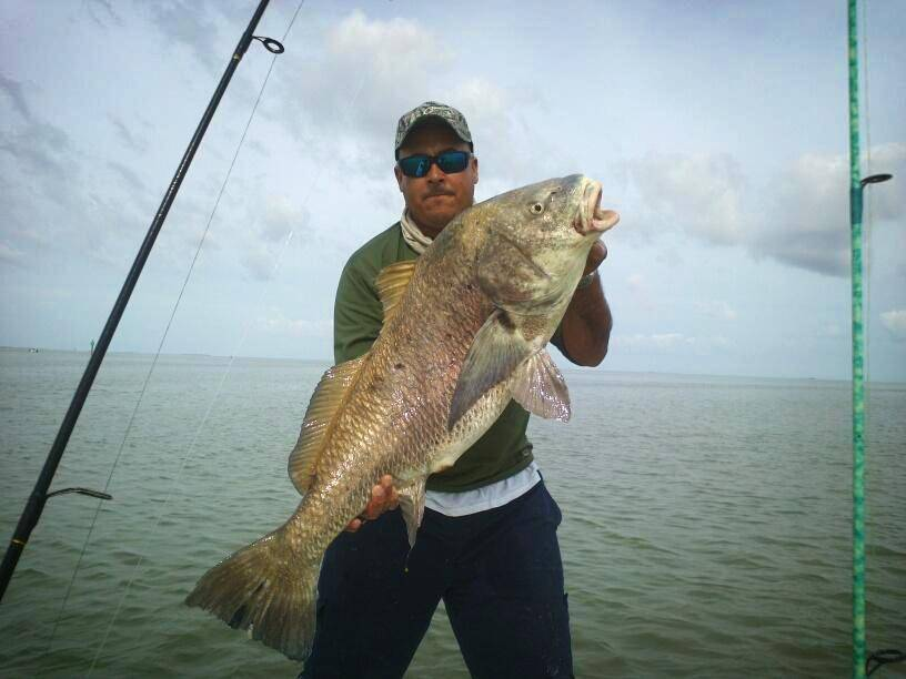 Black Drum Catch & Release