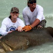 Video: Florida Couple Reels In Giant Grouper from Shore