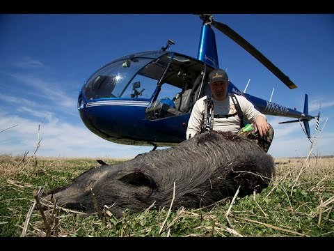 WATCH: Helicopter Hog Hunting…with a Bow