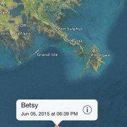 Great white shark moves off Louisiana coast