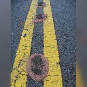 Texas Floods: Piles of Worms Mysteriously Show Up Along Roads