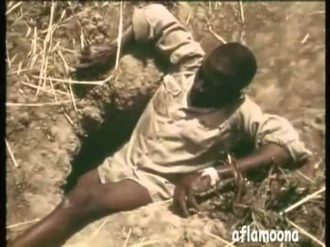 Man uses his Leg as Bait to Catch an Anaconda (VIDEO)