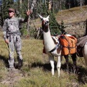 Are Pack Llamas the Next Big Trend for Hunting?