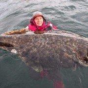 Swedish Angler Jumps into Freezing Water for Behemoth 222-pound Halibut