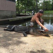 Gator killed, officials find remains of man inside body