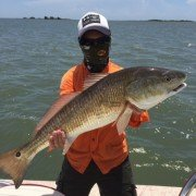 Redfish – Baffin Bay