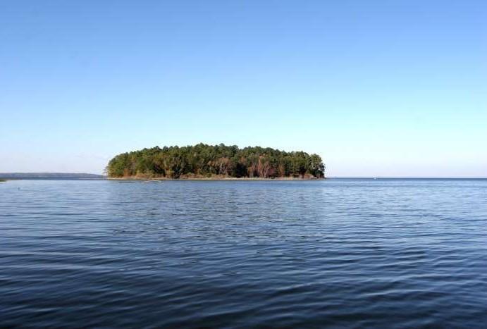 Toledo Bend Lake #1