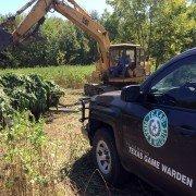 Texas Game Wardens Destroy $6 Million Marijuana Farm on Cooper WMA