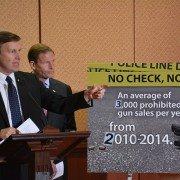 Senate Dems introduce 'No Check, No Sale' bill for gun sales
