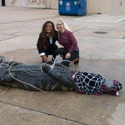 Woman Wrangles 12-foot Alligator in Texas Parking Lot