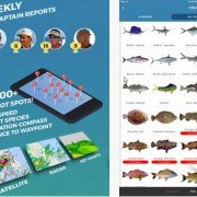 Pro Angler: Finally, a Decent Fishing App?