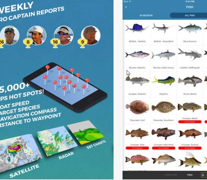 Pro Angler: Finally, a Decent Fishing App?