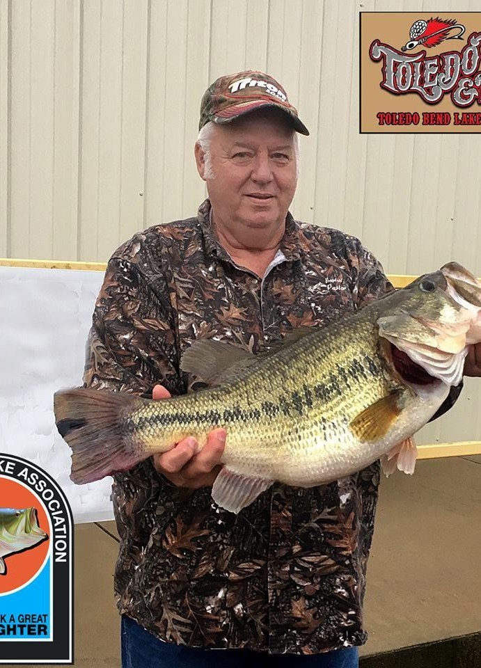 Toledo Bend yielding big bass