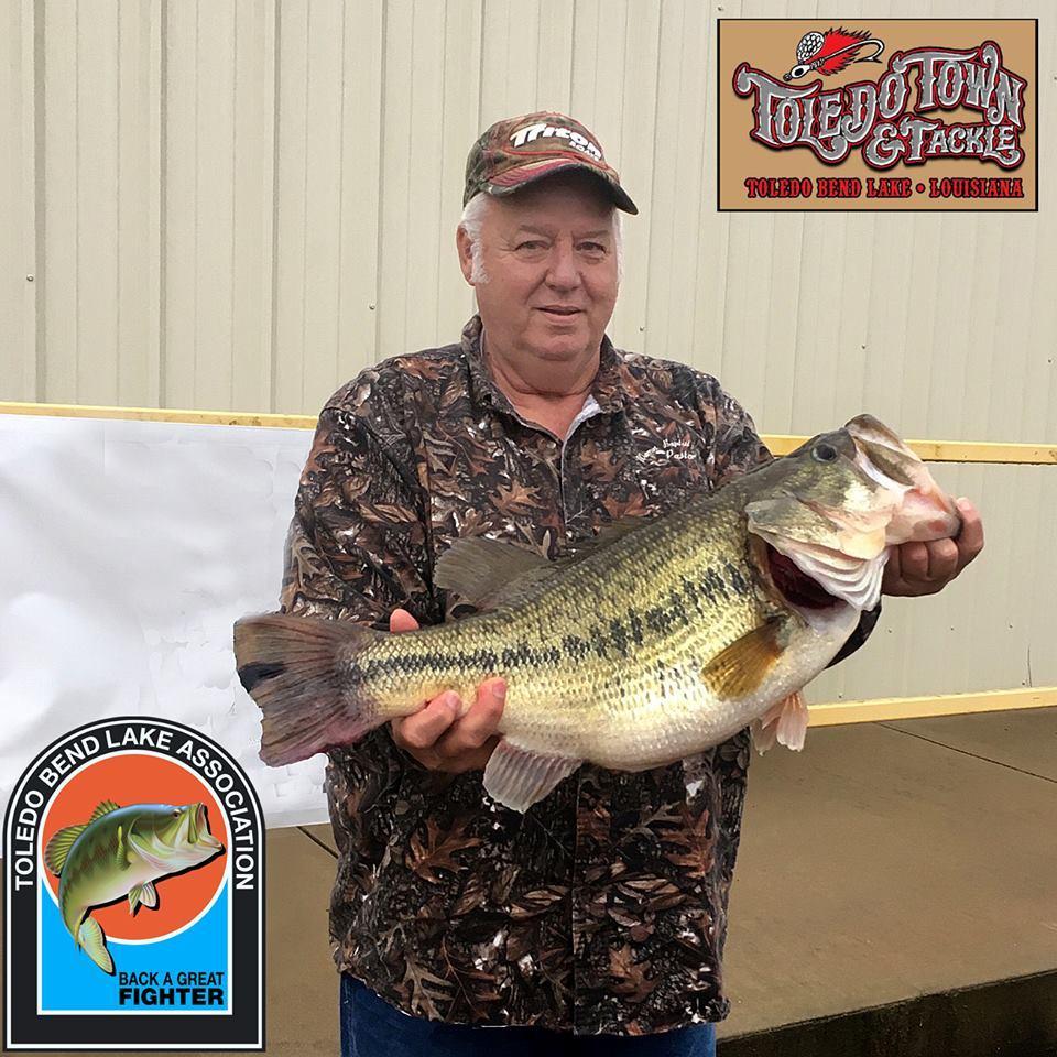 Toledo Bend yielding big bass