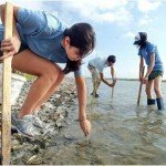 Coastal Bend Bays & Estuaries Program' Nueces Bay Marsh Restoration Project