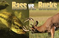 Bass vs. Bucks