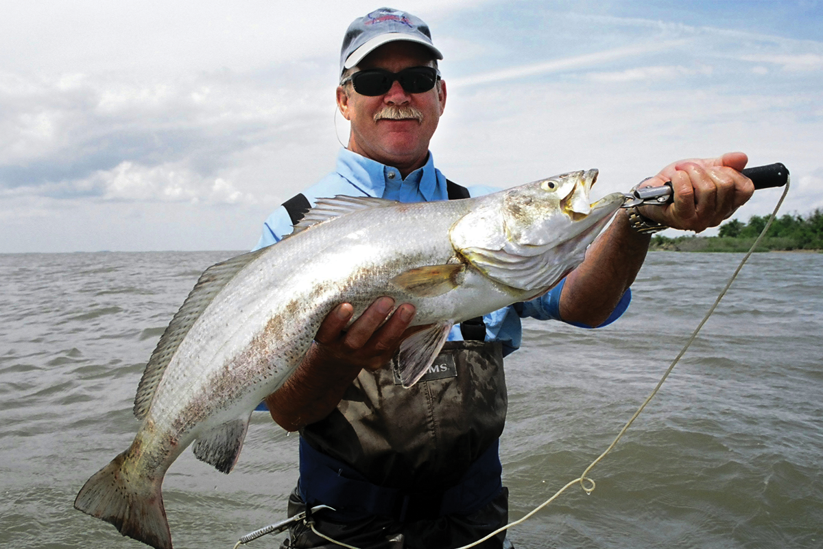 The basics of trout fishing the largemouth bass of saltwater for Trout fishing basics