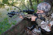 Crossing off Hogs: A Crossbow Hog Hunting Adventure