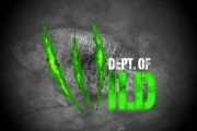 Dept. of Wild: The Crappie Thump