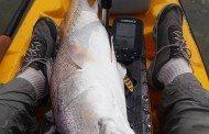 Texas Hotshots - Bull Redfish Action Sea Rim State Park