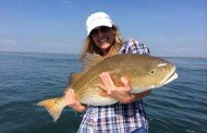 Target the Redfish Frenzy