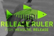 New Gear: Texas Inshore Slam Release Ruler