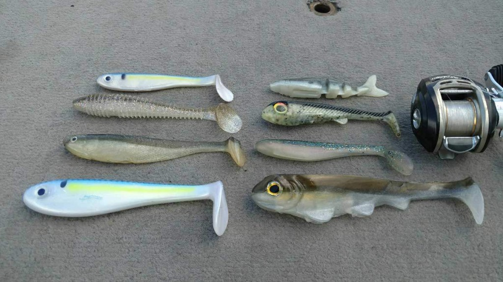 swimbaits-1-1200