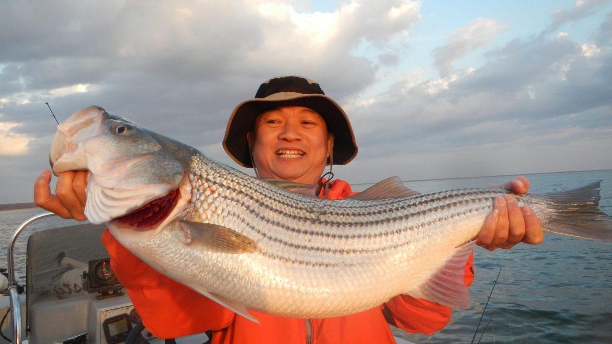 Remember December - Lake Texoma Striper Fishing