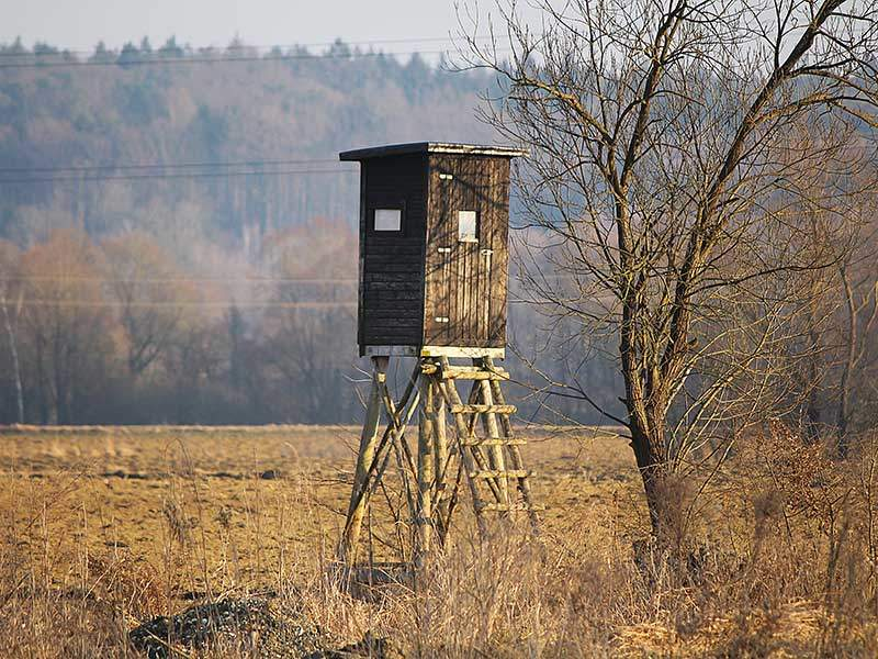 TPWD Unveils Hunting Season Regulation Proposals for 2017-18