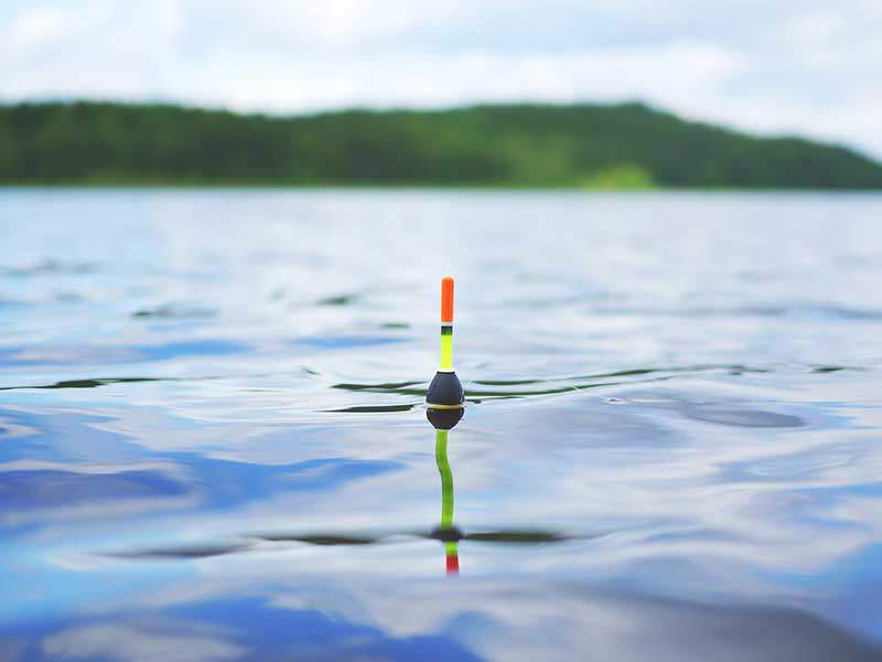 TPWD Releases Freshwater Fishing Regulation Proposals for 2017-18