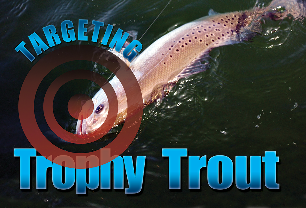 Targeting Trophy Trout