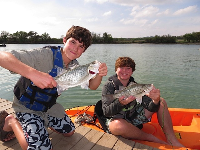 Twin Record White Bass