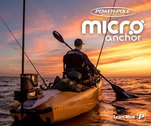 300x250_micro