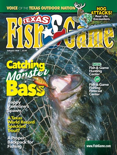 2002-Feb-Cover-384